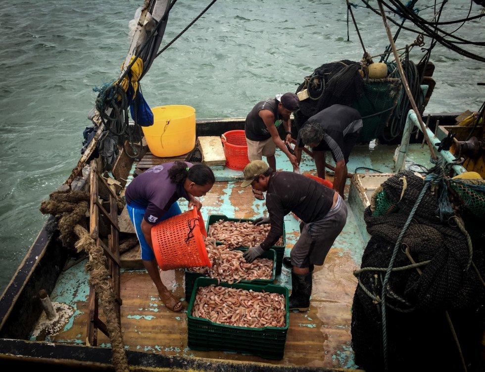 Pescadores preparándose para el acopio de marisco en el Puerto de San Juan del Sur.