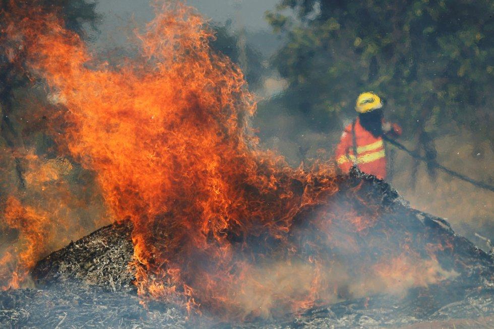 Bombeiro tenta extinguir as chamas durante incêndio que começou durante a estação de seca em Brasília. Segundo o Instituto Nacional de Pesquisas Espaciais (Inpe), os incêndios florestais aumentaram 83% com relação ao mesmo período de 2018.