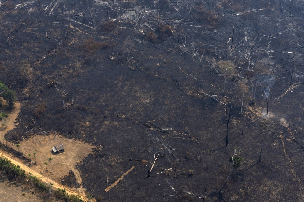 """La NASA también es cautelosa. """"No es inusual ver incendios en Brasil en esta época del año, debido a las altas temperaturas y a la baja humedad. El tiempo dirá si este año es un récord o simplemente está dentro de los límites normales"""", tranquiliza la agencia espacial estadounidense en su web. En la imagen, una casa rodeada de tierra arrasada por los incendios cerca de Porto Velho (Brasil), el 23 de agosto."""