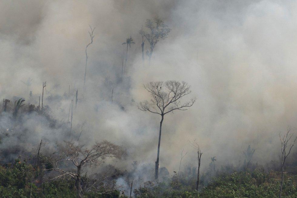 """""""Nuestra casa está en llamas. Literalmente. La selva amazónica —los pulmones que producen el 20% del oxígeno de nuestro planeta— está en llamas. Es una crisis internacional"""", proclamó el jueves el presidente francés, Emmanuel Macron, en su cuenta de Twitter. Algunos expertos consultados son más cautos. En la imagen, vista del incendio cerca de Porto Velho (Brasil), el viernes 23 de agosto."""