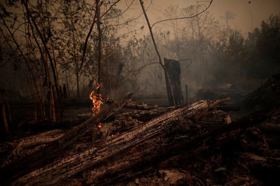 """""""Creo que este año, hasta ahora, es normal en promedio, aunque la gravedad de los incendios varía por regiones. La diferencia es que este año los medios de comunicación se han hecho eco de la quema de la Amazonia, lo cual es genial"""", opina el ecólogo David Edwards, jefe del mismo laboratorio de la Universidad de Sheffield. En la imagen, troncos ardiendo en una zona de llamas de la selva amazónica, cerca de Porto Velho (Brasil), el 23 de agosto."""