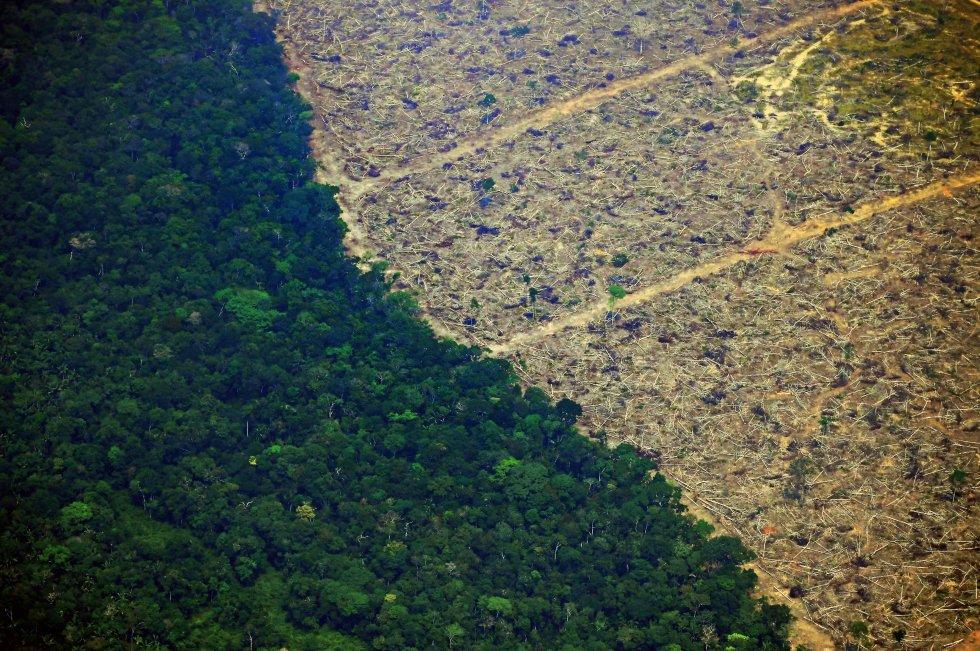 El investigador David Edawards recuerda que los incendios en la cuenca amazónica son especialmente graves cuando ocurre El Niño, un fenómeno meteorológico natural y cíclico, vinculado a un incremento de las temperaturas en la parte oriental del Pacífico tropical. Los 70.625 focos registrados en 2016 coincidieron con un evento de El Niño potente. Este año, sin embargo, el fenómeno es débil y, pese a ello, se han detectado más incendios. En la imagen, vista aéra de la defoerestación provocada por los incendios a 65 km de Porto Velho (Brazil), el 23 de agosto.