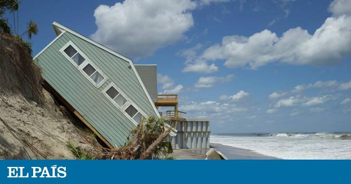 Los humanos: ¿darán la talla ante el desastre climático?