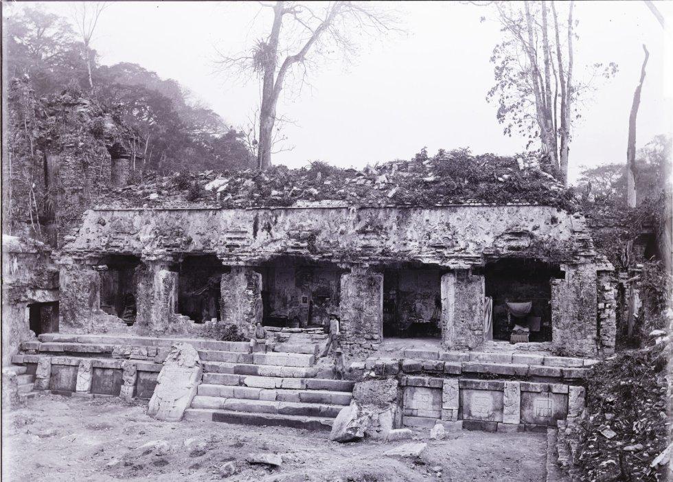 A casa C no Palenque. Em suas andanças pela cidade, Maudslay fez um molde de gesso da escada hieroglífica da Casa C do Palácio, construída pelo governante Pakal no século VII.