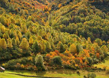 13 magical fall getaways in Asturias