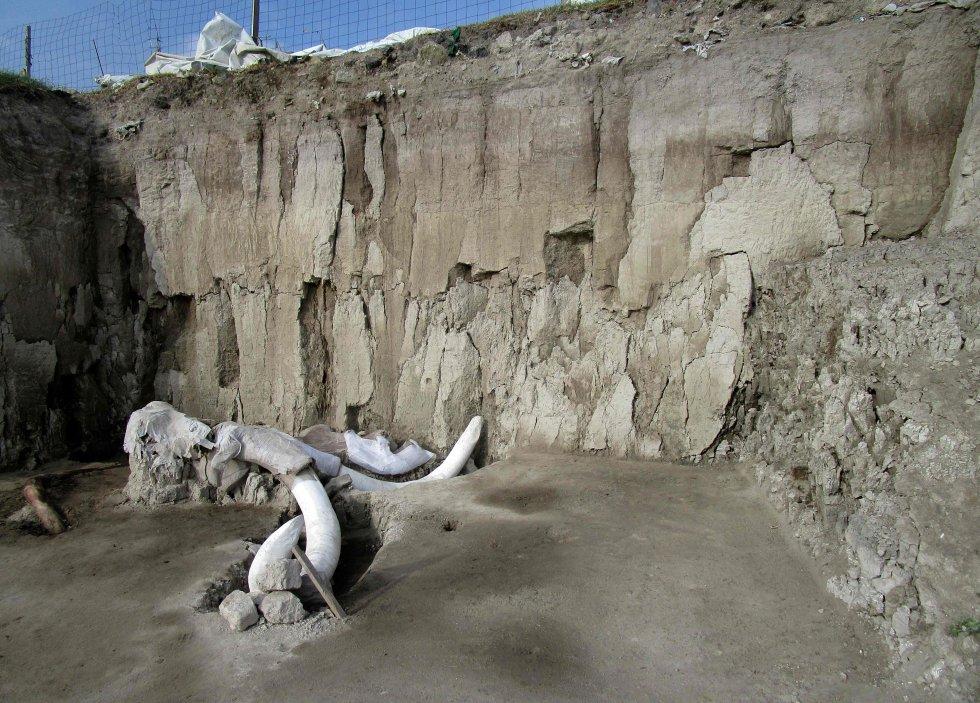 En el municipio de Tultepec, a unos 40 kilómetros al norte de Ciudad de México, se han hallado 824 huesos pertenecientes a 14 mamuts dentro de trampas excavadas por cazadores, por primera vez en la historia. En la foto, vista general del lugar donde se encontraron los restos óseos, el 6 de noviembre.