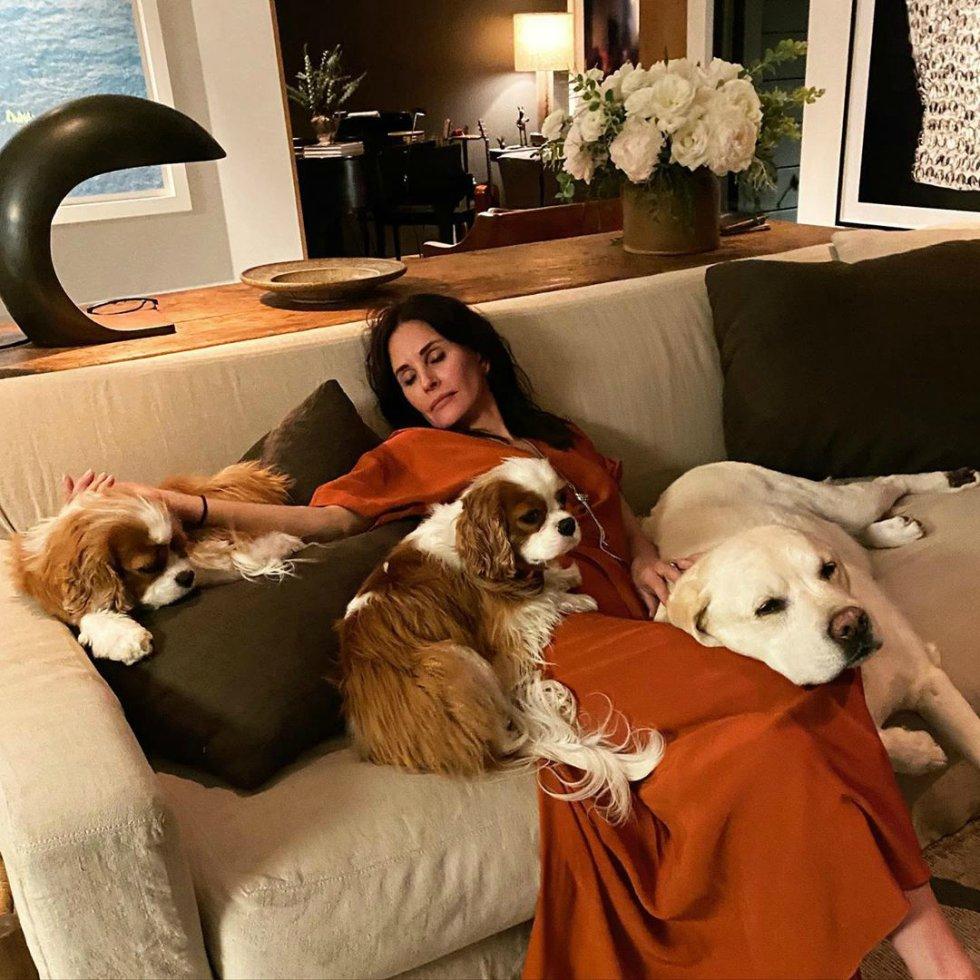 Al principio de la cena, Courteney Cox compartió un selfie junto a su hija, Coco Arquette, de 15 años. Pero la actriz acabó tan cansada al final de la noche, que decidió inmortalizar el momento con un retrato en el sofá rodeada de sus mascotas.