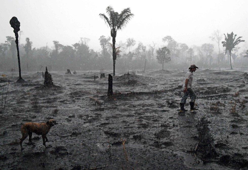 """O Instituto Nacional de Pesquisas Espaciais (INPE) estima que em agosto deste ano foram queimados 2,5 milhões de hectares na Amazônia. A queima intencional de florestas para uso agrícola marcou um ano desastroso para o grande pulmão do nosso planeta. Neste ano, o presidente Jair Bolsonaro disse que """"queima controlada"""" é uma """"tradição"""" em algumas partes do país. Na foto, o agricultor Hélio Lombardo Do Santos e seu cachorro, em uma área de floresta queimada em Porto Velho, no estado de Rondônia, no Brasil, em 26 de agosto."""