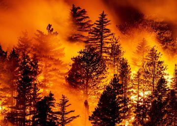 Los incendios en California y Oregón arrasan la costa oeste de EE UU, en imágenes
