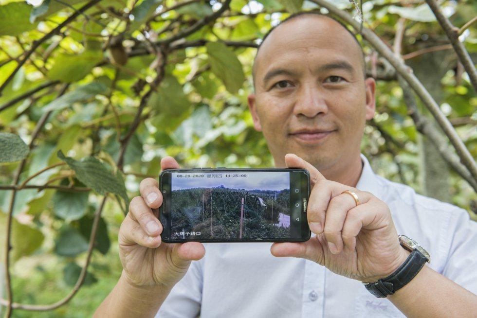 Los agricultores pueden seguir a través del móvil, y en tiempo real, la emisión de las cámaras que recogen el estado del terreno en multitud de parcelas. El 5G va llegando también a las zonas rurales y es un gran aliado.