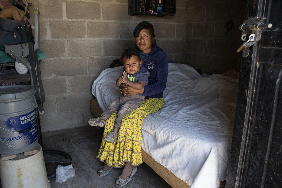 La explotación infantil en campos se penaliza con cárcel. Pese a que se han abierto 38 procesos sancionatorios contra productores, ninguno ha llegado a sentencia y tan solo en dos casos las autoridades estatales han impuesto multas, recientemente. Guadalupe y su bebé, en su vivienda.