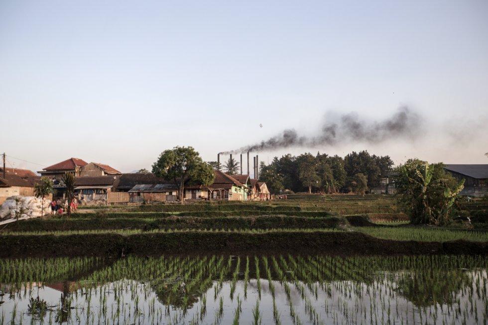 A fabricação nas indústrias têxteis, desde a produção até o tingimento, requer enormes quantidades de água.  Na área de Majalaya, centenas de fábricas movidas a carvão usam toda a água disponível.  Após o despejo, os agricultores usam para irrigar campos agrícolas.