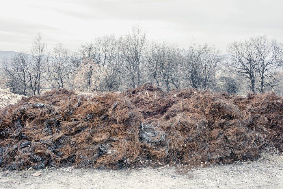 Esqueletos de neumáticos quemados en hornos, delante de los árboles ennegrecidos por la contaminación. Un informe reciente sobre los resultados de una prueba piloto realizada por la Unión Europea calcula que la tercera parte de las muertes en la región de Skopje son atribuibles a las partículas contaminantes en suspensión. Además de con la mortalidad, su presencia se relaciona con enfermedades crónicas, como afecciones cardiovasculares y respiratorias, así como con el cáncer.