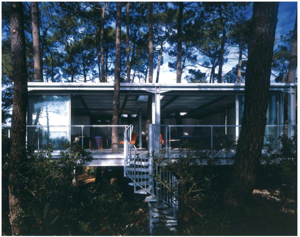 Un pino atraviesa los forjados de esta casa, construida rodeándolo, para no perder la sombra y no tener que talar el árbol.
