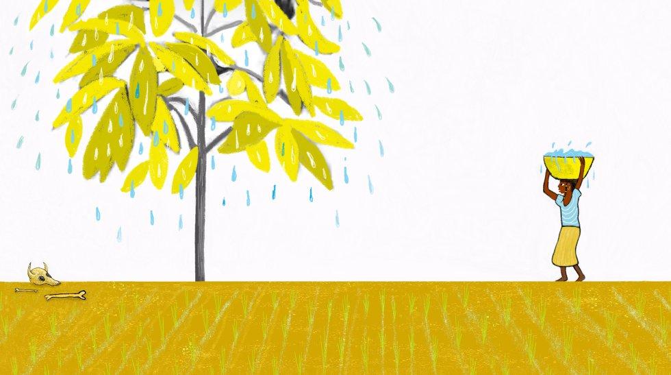 Era mayo y hacía mucho calor. Lo recuerdo bien porque aún no había empezado la estación de las lluvias y las flores de los baobabs todavía estaban cerradas. Había pasado mil veces por ese mismo lugar, pero nunca me había fijado en aquel árbol. rnSus hojas estaban amarillentas, y no era por el reflejo del sol, y también mojadas, y no era porque lloviera. Aquel árbol sudaba, y yo no había visto nunca antes algo igual.