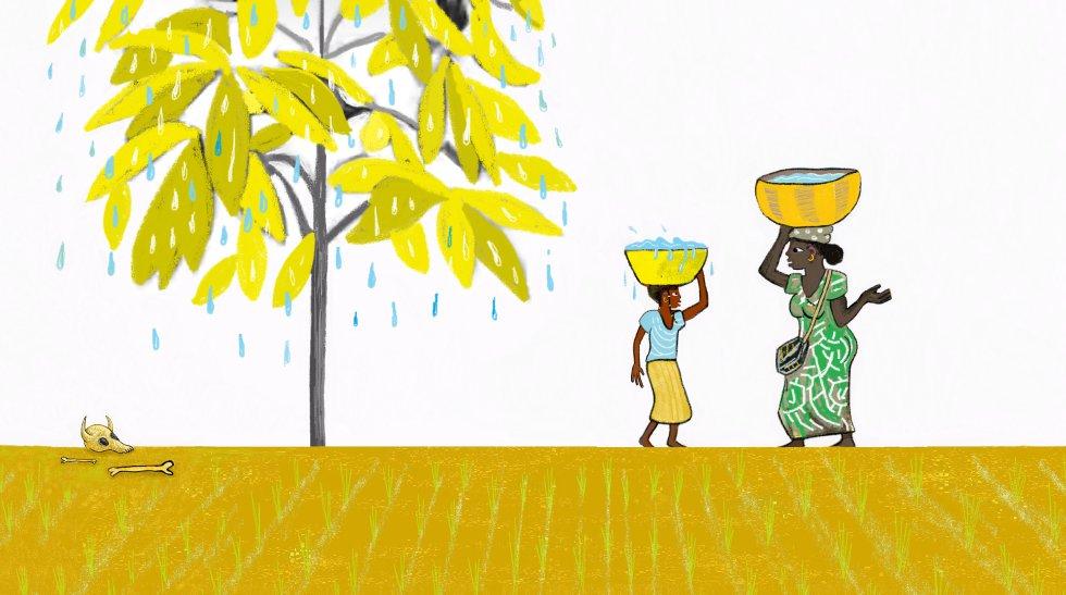Suda porque le falta agua, me explicó mamá.rn –El clima está cambiando, Nana: las temperaturas son más altas y los árboles, que son seres vivos, se adaptan mojando sus hojas para evitar quemarse. rn –¡Claro! Como las personas, que a veces también sudamos. rn –Sí, es una reacción de nuestro cuerpo cuando sentimos mucho calor, así nos refrescamos.