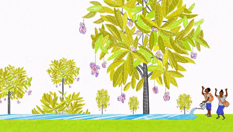 Al salir de la escuela Amadou y yo nos hemos acercado hasta el árbol que sudaba. Cada día le damos un gran abrazo y le cantamos una canción.rnTambién le damos agua. Ahora ya no suda. Está muy verde.
