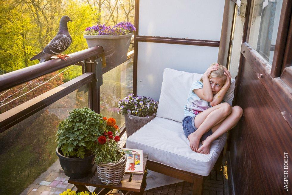 'Dollie' entra para posarse en la puerta del balcón, donde aprovecha el punto de vista más alto para comprobar si puede entrar en la cocina, en Vlaardingen, Países Bajos. Una pareja de palomas asilvestradas se hizo amiga de la familia del fotógrafo, que estaba aislada en su apartamento de Vlaardingen (Países Bajos) durante la pandemia.