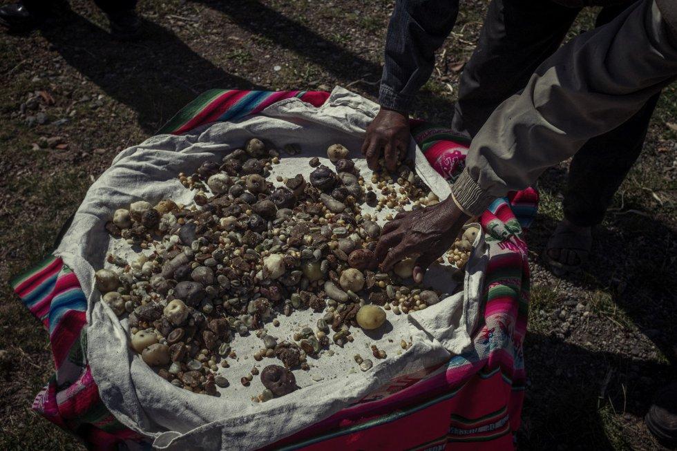 Alimento sagrado de los incas por sus propiedades nutricionales y nutracéuticas, la quinoa se relacionaba con la religión y la cultura, que le atribuían propiedades sobrenaturales. En la imagen, la comida que se realiza como ofrenda en Copaquira, que incluye todos los productos autóctonos que se están recuperando: varios tipos de papas, maíz y habas.