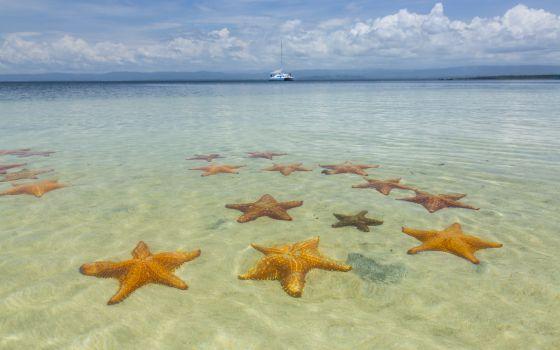Estrellas en la boca del dragón | El Viajero | EL PAÍS