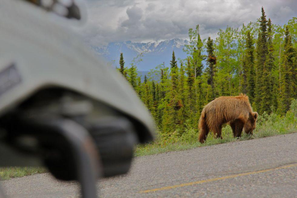 El Camino Vancouver >> Fotos: En moto por Canadá y Alaska | El Viajero | EL PAÍS