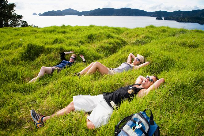 20 experiencias neozelandesas