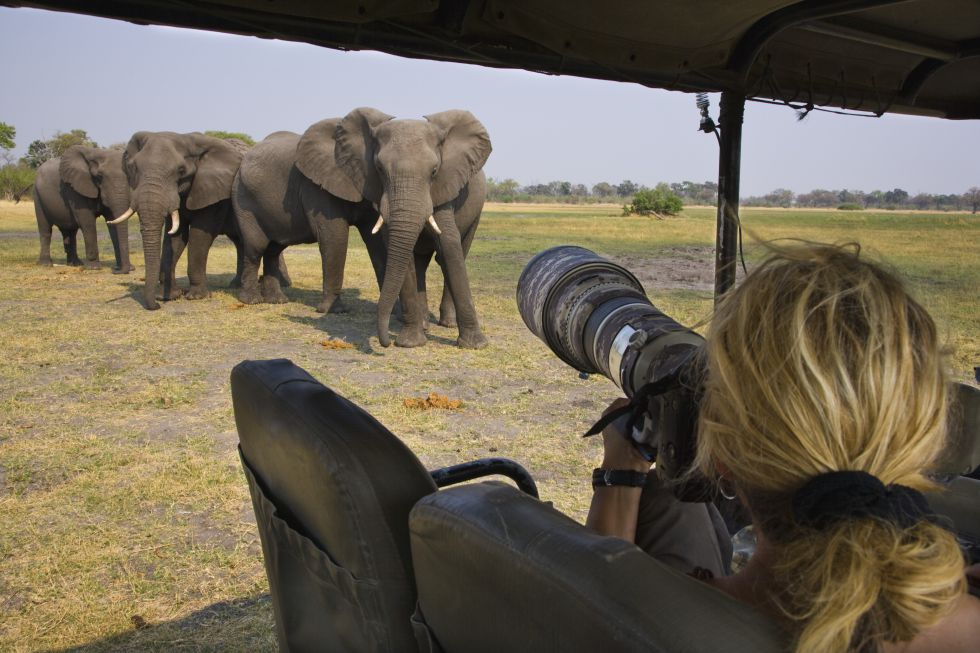De safari en el Ngorongoro - La Danza Masai - Viva Operador