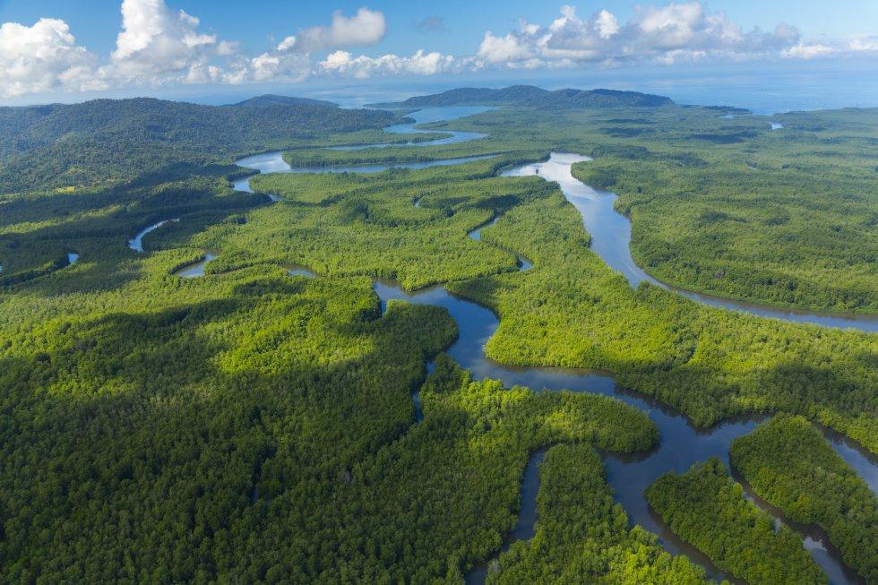 Exótico, exuberante. Son algunos de los calificativos que se ha ganado el parque nacional Corcovado, en la aislada península Osa, al sur de Costa Rica, uno de los más grandes y únicos bosques lluviosos tropicales primarios del mundo, donde operan diversas agencias de ecoturismo. Fue creado para proteger tanta riqueza biológica de los buscadores de oro y las explotaciones forestales, y en sus 13 ecosistemas –manglares, arboledas de palmeras, pantanos– vive el quetzal, el sapo flecha, el cocodrilo, el puma y el jaguar, y cuatro especies de tortugas marinas.