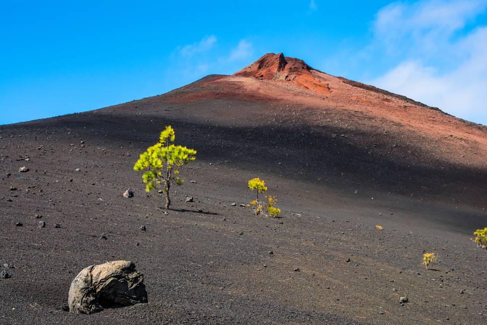 Campos de lava y sedimentos. Y unas fantásticas vistas al Teide, el Valle de la Orotava, Izaña y el Circo de las Cañadas. Recorrer el sendero Arenas Negras, en el parque nacional del Teide (Tenerife), es sumergirse en un paisaje volcánico mágico de terrenos de piedra pómez y laderas de lapilli. La ruta comienza en el centro de visitantes de El Portillo, asciende bordeando la Montaña del Cerrillar para descender por el Volcán de las Arenas Negras.