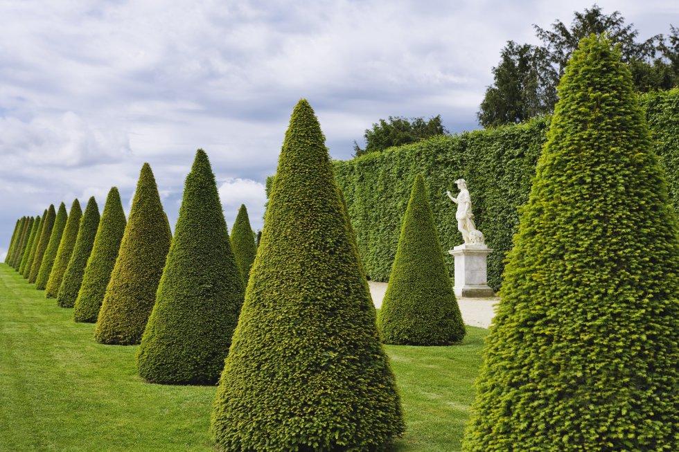 Versalles, patrimonio mundial , no sería Versalles sin su parque y sus jardines a la francesa. Una alfombra de 800 hectáreas, refinada y majestuosa, que se extiende a las puertas de palacio. Cuenta con 300 hectáreas de bosque, un invernadero de naranjos (L'Orangerie), estatuas y 55 estanques (el más grande de los cuales es el Gran Canal). También tiene fuentes que de abril a octubre bailan sus aguas al ritmo de la música en algunos momentos del día. Abarcarlo todo en una sola jornada es prácticamente imposible, aunque se puede intentar alquilando una bici o un coche eléctrico, o en el trenecito turístico que recorre el Gran Trianón (pequeño palacio de mármol rosa), el Pequeño Trianón o el Dominio de María Antonieta.