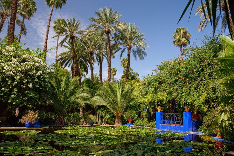Refinamiento árabe de palmeras y fuentes de agua susurrante. El  Jardín Majorelle  asoma, refrescante, en el corazón de Marrakech, como el sueño del pintor francés Jacques Majorelle, que necesitó 40 años para crear este oasis exótico de caminos sombreados, arroyos, estanques llenos de nenúfares y flores de loto. El viento murmurando entre las hojas, los pájaros cantando, el aire cargado de aroma a jazmín. Y un edificio pintado en un añil vibrante, con todo su encanto morisco aderezado por toques art decó.  Yves Saint-Laurent y Pierre Bergé  compraron la propiedad, que estaba abandonada, en 1980; conservaron la vivienda para su uso privado, transformaron el taller en museo de arte islámico y restauraron el jardín.