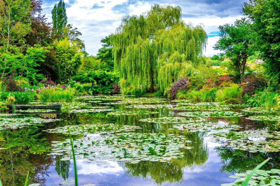 Podría decirse que Claude Monet creaba dos veces. Primero como agricultor, cultivando con primor nenúfares, juncos, lirios. Y, después, como pintor, inmortalizándolos en un lienzo. Su gran modelo y fuente de inspiración fueron  los dos jardines que diseñó en Giverny , en la región de Normandía (Francia), donde se trasladó con su familia en 1883. Ideó un jardín de flores, Les Clos Normand, delante de su casa, ordenado por colores, con árboles frutales, rosales trepadores, malvarrosas. Diez años después compró el terreno vecino, atravesado por un arroyo, y construyó el jardín de agua, con su famoso puente japones cubierto de glicinias.