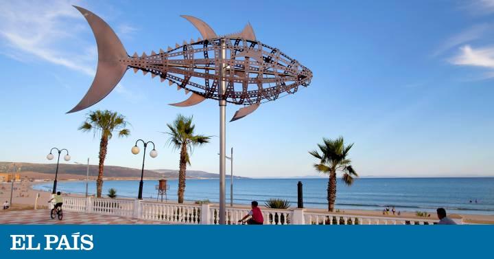 Por la costa de Cádiz en busca del atún de almadraba thumbnail