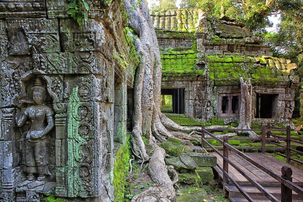 Estos templos, uno de los mayores reclamos turísticos del planeta, agotan los superlativos. No hay ningún otro lugar del mundo con tal concentración de riqueza arquitectónica. El viajero puede escoger entre  Angkor Wat, el mayor edificio religioso del mundo ; Bayon, uno de los más extraños, con inmensos rostros de piedra, y Ta Prohm (en la foto), un templo invadido por la naturaleza. Además de los tres grandes, hay decenas más, cada uno de los cuales podría ser la estrella si se encontrara en otro punto de la región, como el Banteay Srei, la galería de arte de Angkor; el Prah Khan, la suprema fusión de budismo e hinduismo, o el Beng Mealea, el 'Titanic' de los templos, ahogado bajo la jungla.    Fusión perfecta entre ambición creativa y devoción espiritual, aquí los dioses-reyes camboyanos de antaño se esforzaron por superar a sus antepasados en tamaño, escala y simetría. Hoy son lugar de peregrinación para los camboyanos, y ningún viajero debe perderse su extravagante belleza. Los cientos de templos que quedan hoy no son más que el esqueleto de un enorme centro social, religioso y político del antiguo imperio jemer, una ciudad que llegó a tener un millón de habitantes en el siglo XII (cuando Londres apenas tenía 50.000). De la ciudad solo quedan los templos, lo único construido en piedra.
