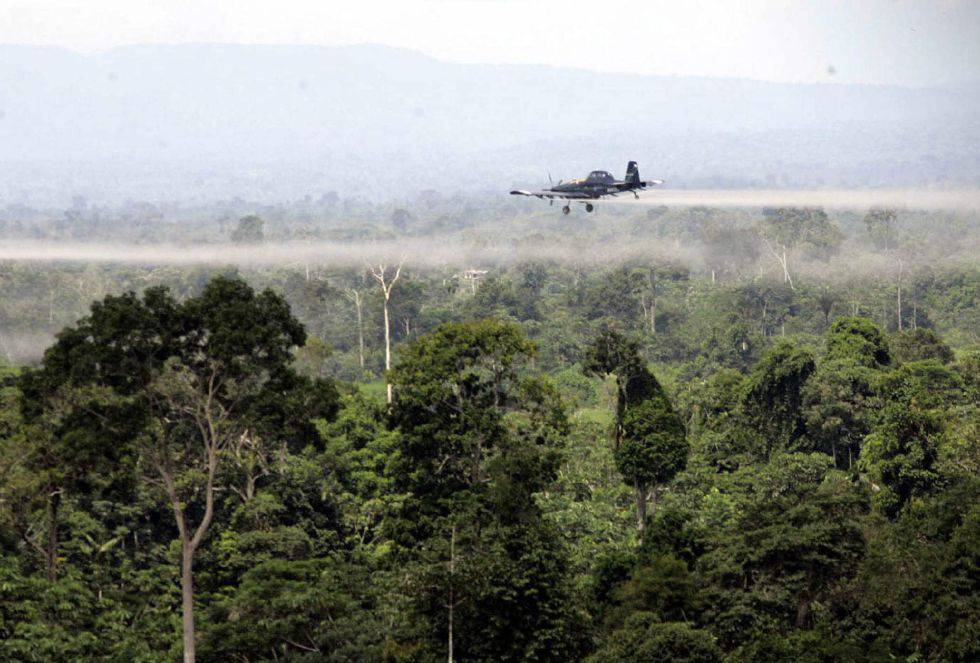 Colombia autoriza la erradicación de cultivos ilícitos con glifosato |  Colombia | EL PAÍS