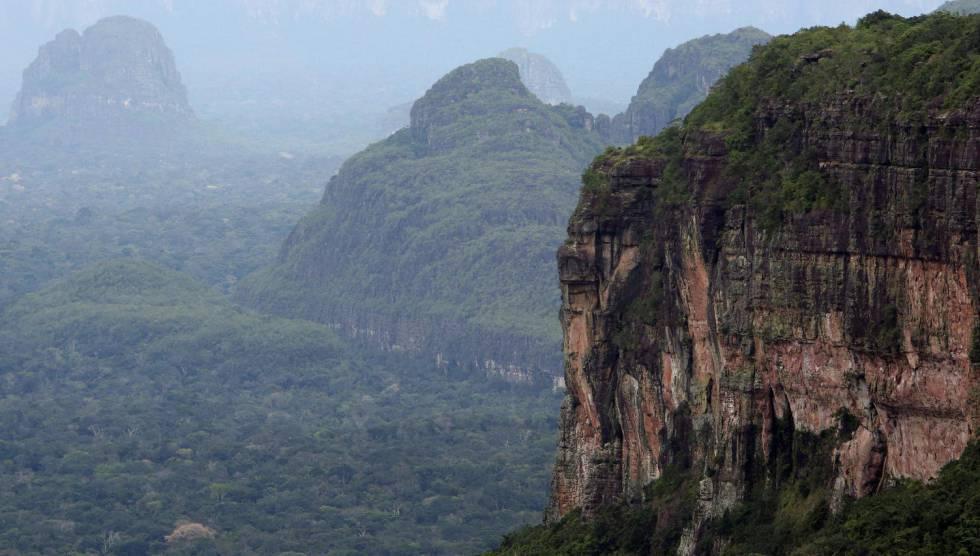 El mayor parque natural de Colombia es declarado libre de cultivos de coca