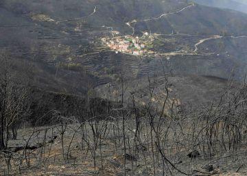 ¿Por qué los incendios en Portugal son tan letales?