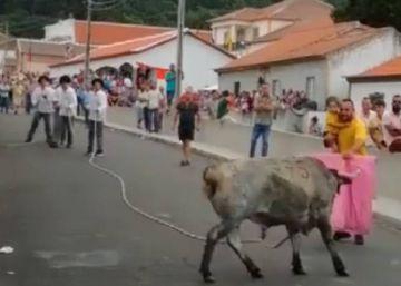 Un hombre con un bebé en brazos mientras torea a una vaquilla causa indignación en Portugal