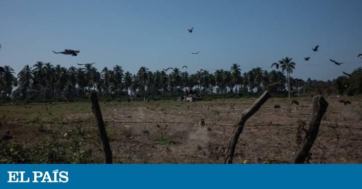México sale en busca de sus desaparecidos