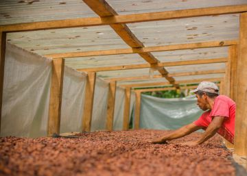 Por qué no se reduce (más) el hambre en Latinoamérica