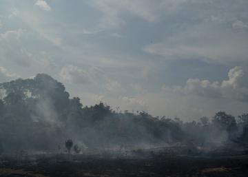 Brasil aceptará la ayuda internacional para los incendios en el Amazonas siempre que pueda decidir cómo usarla