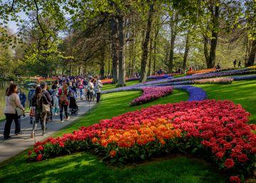 El cambio climático vuelve locos a los jardineros de los Países Bajos