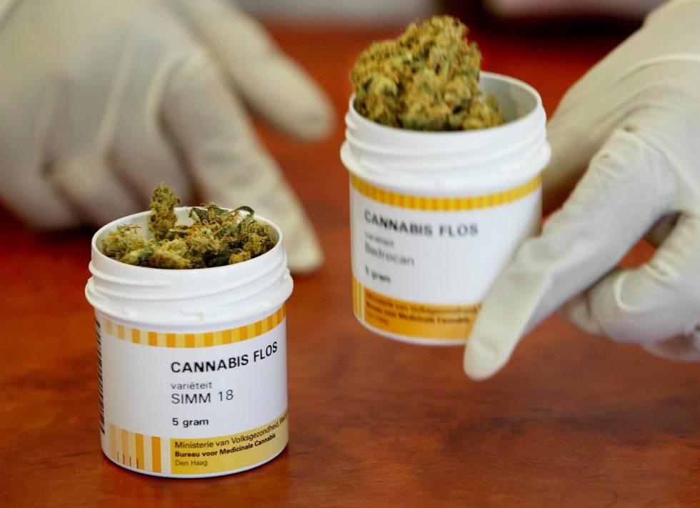 Resultado de imagen para cannabis uso medicinal
