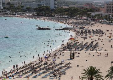 La Policía Nacional identifica a 800 turistas británicos por falsas intoxicaciones