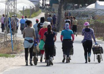 Andalucía formará a los capataces para evitar abusos sexuales a las temporeras