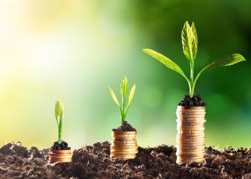 Siete empresas con propósito que favorecen el desarrollo sostenible