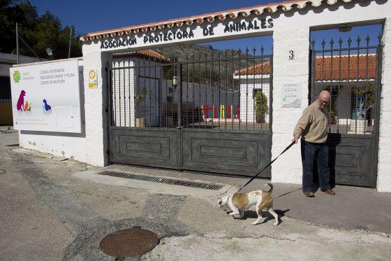 Risultati immagini per Parque Animal de Torremolinos carmen marin aguilar