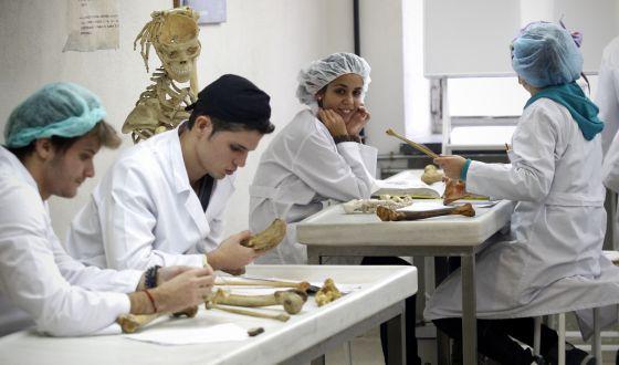 Los estudiantes de Medicina solo reciben 12 horas de clase ...