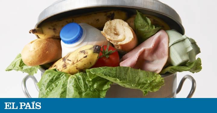 las cinco comidas del dia en ingles
