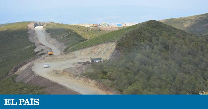La justicia suspende la autorización del parque eólico de Lugo que amenaza al oso pardo
